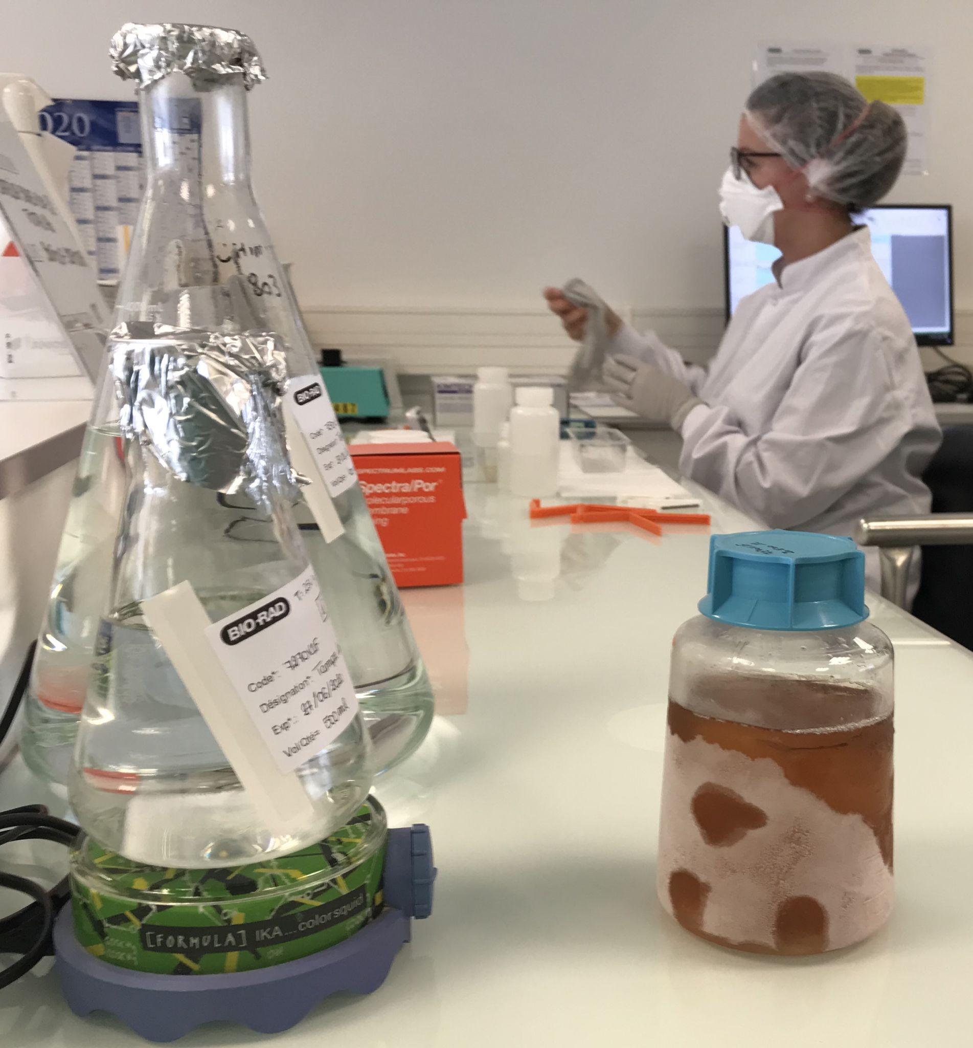 biotech info articles production de protéines