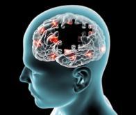 biotech info articles maladie de parkinson des avancees decisives sont en cours